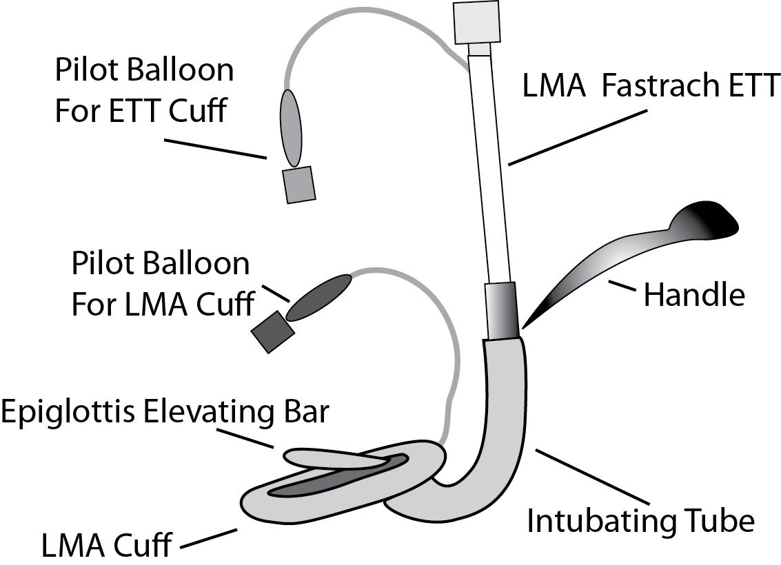 Lma A Wiring Diagram | Wiring Diagram  Sc Wiring Diagram on 356c wiring diagram, es350 wiring diagram, porsche wiring diagram, carrera wiring diagram, turbo wiring diagram, saturn s series wiring diagram,